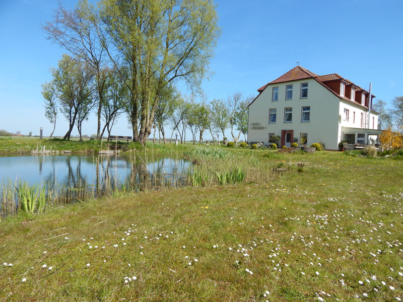 Pension-Zollhaus-Norden-726